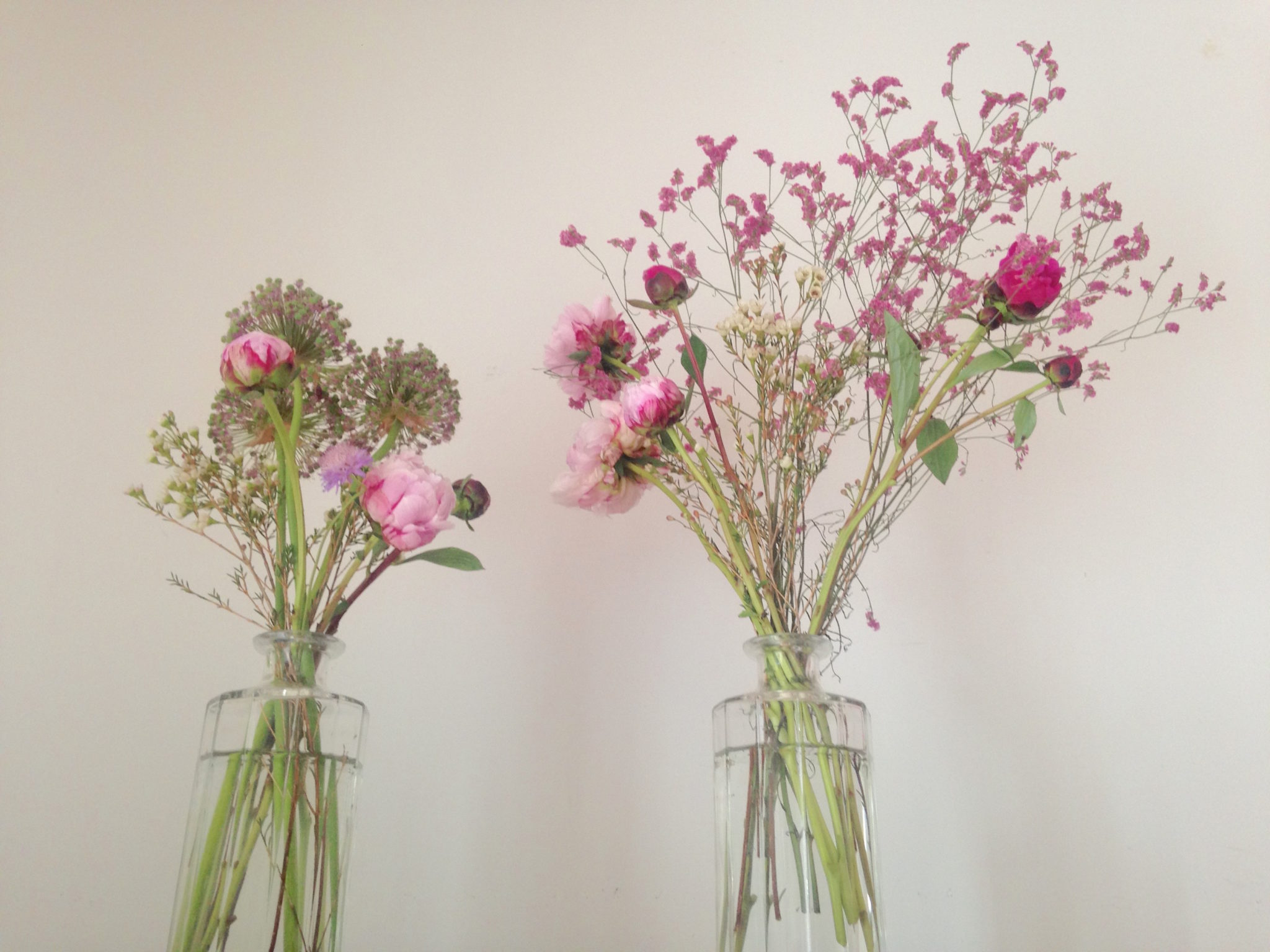 Copihue - Avete mai notato come la forma di un fiore somigli a chi li compra?